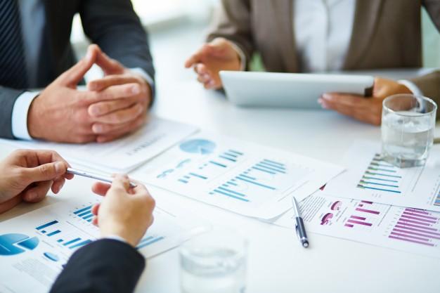 Company financial essays