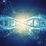 Nuevo estudio sobre genética y EM